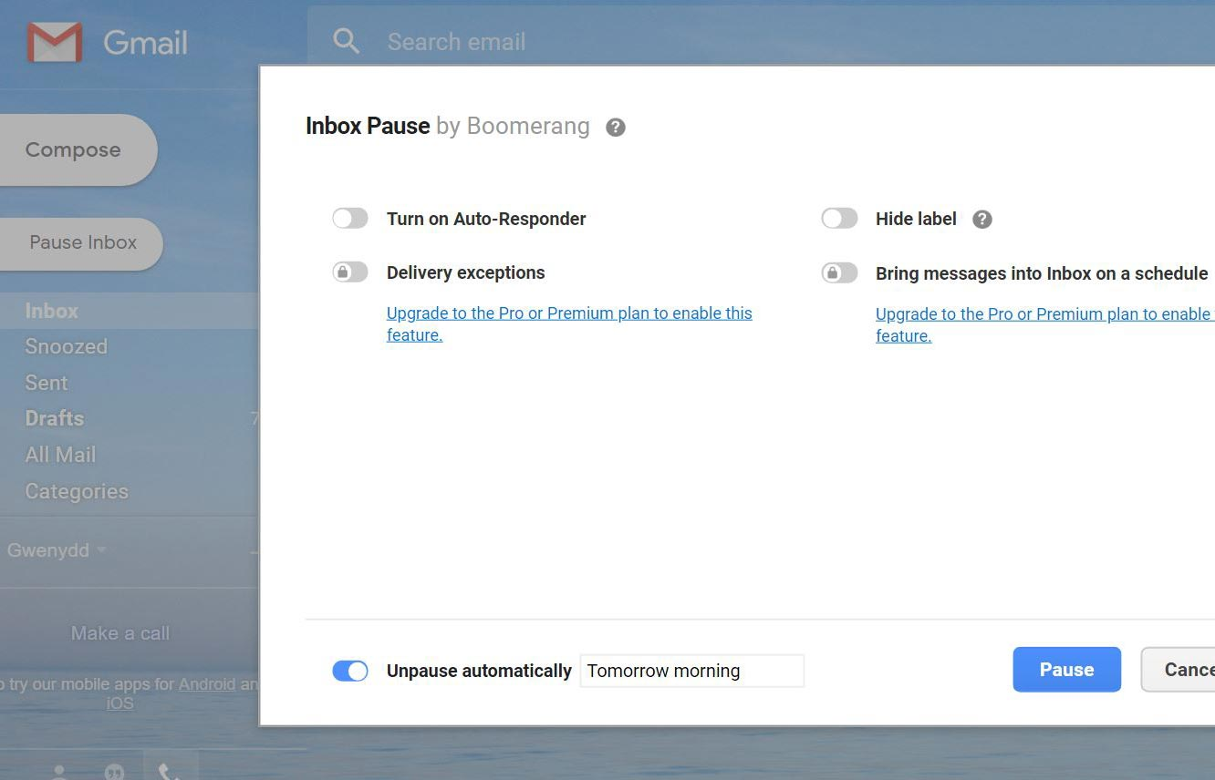 Screenshot of pro translator using Boomerang for Gmail to pause inbox