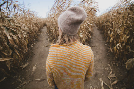 A woman looking at two similar paths in a cornfield as a metaphor for how it feels when you need help choosing a CAT tool.