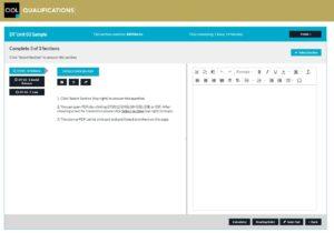 Screenshot of the CIOL DipTrans exam online platform